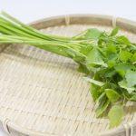 【きょうの料理】中国風せりご飯のレシピ