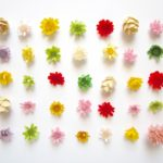 【きょうの料理】自家製フリージングごはん!基本の作り方とポイント!堤人美さんの冷凍レシピ(3月19日)