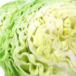 春キャベツで作るサラダの簡単レシピ12選!人気1位はコレ!