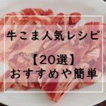 牛こまレシピ!つくれぽ1000の殿堂入り人気1位は?おすすめ【20選】キャベツ・大根・白菜・たまねぎなど!お弁当にも