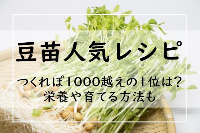 苗 レシピ 豆