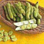 【あさイチ】そら豆のオーブン焼きローズマリー風味の作り方!イタリアシェフ濱崎龍一さんのレシピ(2月26日)