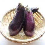 【きょうの料理ビギナーズ】なすの料理2品!なすみそ・なす、いんげん、鶏肉の炊き合わせのレシピ!(7月8日)
