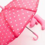 【あさイチ】旅人専科の通販・お取り寄せ方法!傘の置忘れを防げる便利グッズ!?(6月4日)
