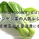 チンゲン菜レシピ!人気15選!つくれぽ1000越え1位は?青梗菜の大量消費にも!