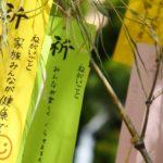 【ノンストップ】七夕の人気レシピ!お星様がちらばった天の川ちらし寿司のレシピ!天の川に見立てたカラフルでかわいいちらし寿司!おしゃレシピ(7月3日)