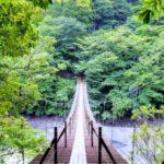 【教えてもらう前と後】世界が注目の緑の絶景吊り橋&願いが叶う吊り橋の場所はどこ?静岡県(9月3日)