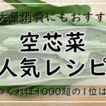 空芯菜レシピ【人気16選】つくれぽ1000超の1位は?大量消費したいときにもどうぞ♪