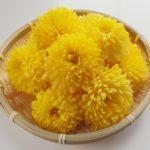 【あさイチ】食用菊を使ったレシピ2品!さばの竜田揚げ菊のサラダ添え・菊とさけのおろしあえ。松村眞由子さん。みんなゴハンだよ(11月6日)