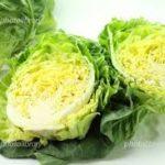 【あさイチ】やりいかと春野菜の塩辛炒めの作り方!道場六三郎さんのレシピ(3月30日)